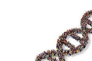 Human Gene Transfer