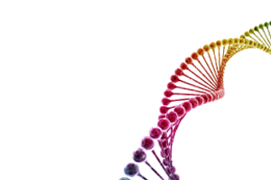 NIH Recombinant DNA Guidelines